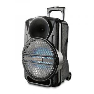 """SP-12ERBT 12"""" Rechargeable Party Speaker"""
